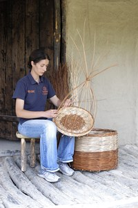 The terramare inhabitants used branches from trees and bushes, such as hazel, viburnum, ash and willow to make baskets, trellises and fences.